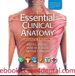 Essential Clinical Anatomy, 4th Edition (pdf)